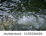 boiling and foaming bubbled... | Shutterstock . vector #1135236434
