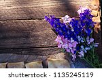 summer flowers  lupines on a... | Shutterstock . vector #1135245119
