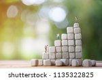 backpacker miniature people on... | Shutterstock . vector #1135322825
