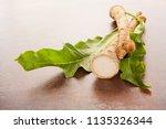 fresh horseradish root and... | Shutterstock . vector #1135326344