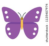 Cute Insect In Purple Color...