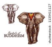 indian elephant sketch of...   Shutterstock .eps vector #1135411127