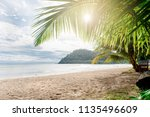 palm and tropical beach | Shutterstock . vector #1135496609