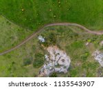 abandoned limestone quarry... | Shutterstock . vector #1135543907