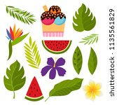 tropical collection with exotic ... | Shutterstock .eps vector #1135561829