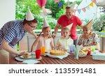 colorful portrait of happy big... | Shutterstock . vector #1135591481
