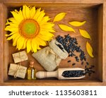 beautiful composition with... | Shutterstock . vector #1135603811