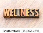 wellness   word abstract in... | Shutterstock . vector #1135612241