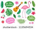 collection of tropical hawaiian ... | Shutterstock .eps vector #1135694534
