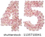 arabic numeral 45  forty five ... | Shutterstock . vector #1135710041
