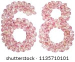 arabic numeral 68  sixty eight  ... | Shutterstock . vector #1135710101