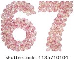 arabic numeral 67  sixty seven  ... | Shutterstock . vector #1135710104