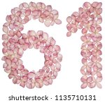 arabic numeral 61  sixty one ... | Shutterstock . vector #1135710131