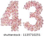 arabic numeral 43  forty three  ... | Shutterstock . vector #1135710251