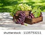 white and red grape on garden... | Shutterstock . vector #1135753211