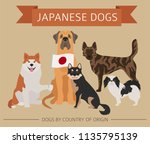 dogs by country of origin.... | Shutterstock .eps vector #1135795139