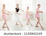 young ballet teacher and... | Shutterstock . vector #1135842149