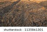 soil for planting | Shutterstock . vector #1135861301
