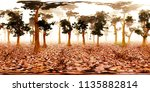 hdri map  spherical environment ... | Shutterstock . vector #1135882814