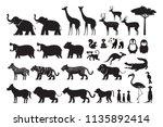 wild animals silhouette vector...   Shutterstock .eps vector #1135892414