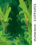 tropical jungle dark background ... | Shutterstock .eps vector #1135916921