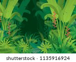 tropical jungle dark background ... | Shutterstock .eps vector #1135916924