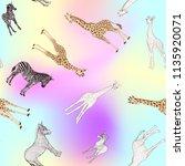 seamless pattern  background ... | Shutterstock .eps vector #1135920071