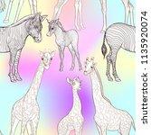 seamless pattern  background ... | Shutterstock .eps vector #1135920074