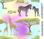 seamless pattern  background ... | Shutterstock .eps vector #1135920077