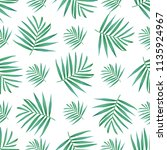 vector palm frond. tropical... | Shutterstock .eps vector #1135924967