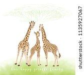 background with giraffe family  ... | Shutterstock .eps vector #1135927067