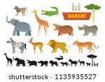 african safari animals set ... | Shutterstock .eps vector #1135935527