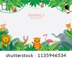 wild animals in jungle  frame ... | Shutterstock .eps vector #1135946534