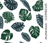 vector tropic seamless pattern. ... | Shutterstock .eps vector #1135982135