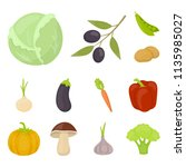 different kinds of vegetables... | Shutterstock . vector #1135985027