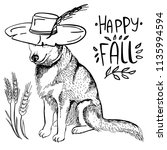 husky dog in cowboy hat and... | Shutterstock .eps vector #1135994594