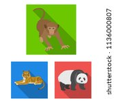 different animals flat icons in ...   Shutterstock . vector #1136000807