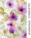 floral painting. wall art for... | Shutterstock . vector #1136016791