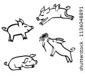 Set of hand drawn cartoon sketches of cute funny piggie characters. 2019 new year symbol. Vector illustration isolated on white background
