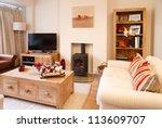 modern christmas interior | Shutterstock . vector #113609707