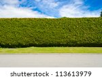 green fence with green lawn | Shutterstock . vector #113613979