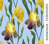 vector seamless pattern. iris... | Shutterstock .eps vector #1136141651