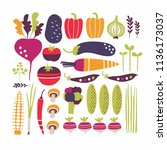 stylized vector set with... | Shutterstock .eps vector #1136173037