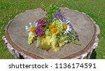 summer wildflowers on a wooden... | Shutterstock . vector #1136174591