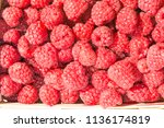 heap of ripe juicy raspberries... | Shutterstock . vector #1136174819