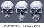 detailed graphic realistic cool ... | Shutterstock .eps vector #1136291441