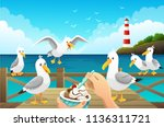 seascape with greedy seagulls... | Shutterstock .eps vector #1136311721