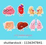human internal organs patches... | Shutterstock .eps vector #1136347841