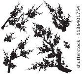 black flowering tree branches... | Shutterstock .eps vector #1136401754