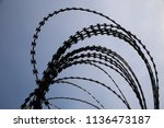 close up photo of barbed wire...   Shutterstock . vector #1136473187